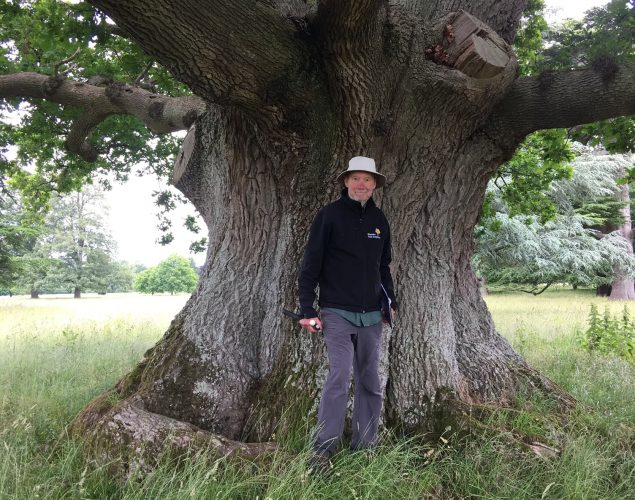 old man standing in front of large tree